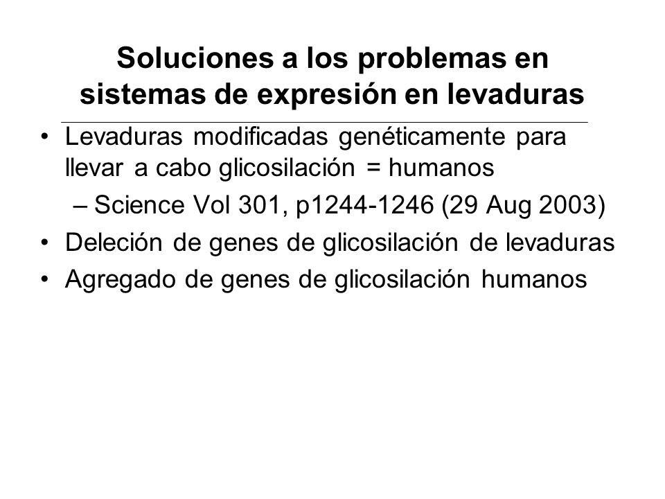 Soluciones a los problemas en sistemas de expresión en levaduras