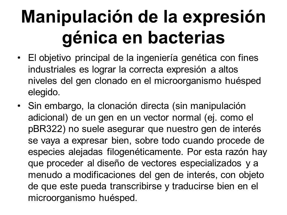 Manipulación de la expresión génica en bacterias