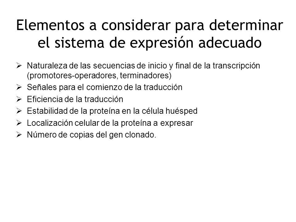 Elementos a considerar para determinar el sistema de expresión adecuado