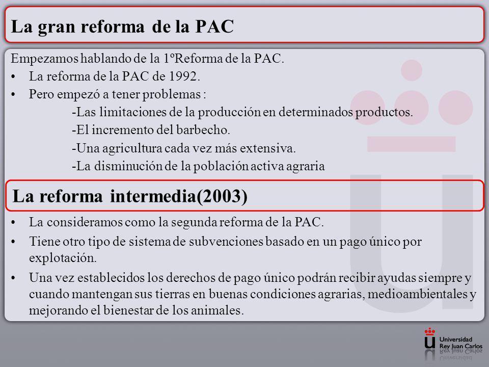 La gran reforma de la PAC