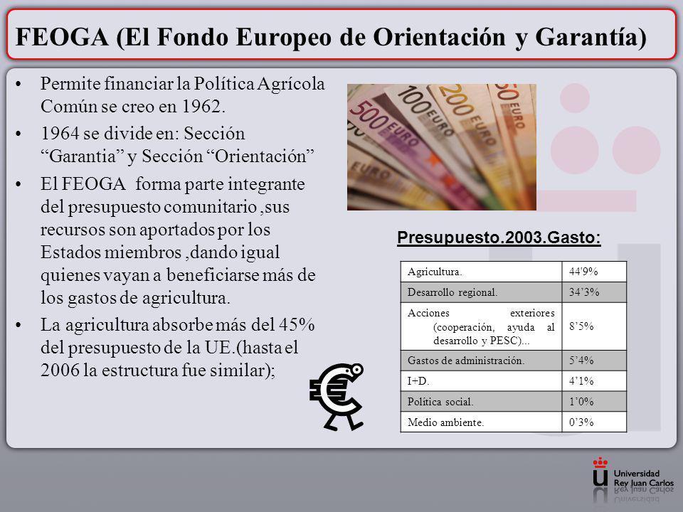 FEOGA (El Fondo Europeo de Orientación y Garantía)