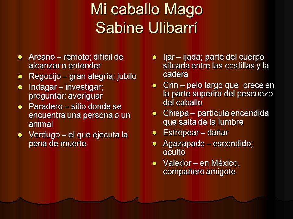 Mi caballo Mago Sabine Ulibarrí
