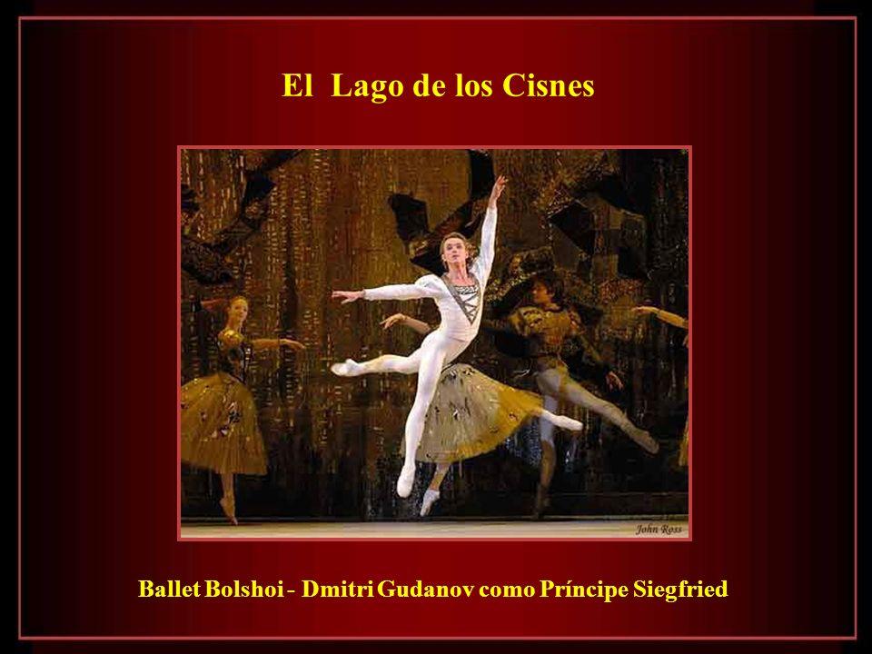 El Lago de los Cisnes Ballet Bolshoi - Dmitri Gudanov como Príncipe Siegfried