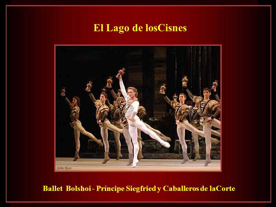 El Lago de losCisnes Ballet Bolshoi - Príncipe Siegfried y Caballeros de laCorte