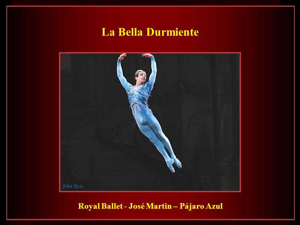 La Bella Durmiente Royal Ballet - José Martin – Pájaro Azul