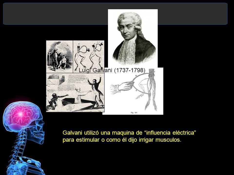 Luigi Galvani (1737-1798) Galvani utilizó una maquina de influencia eléctrica para estimular o como él dijo irrigar musculos.