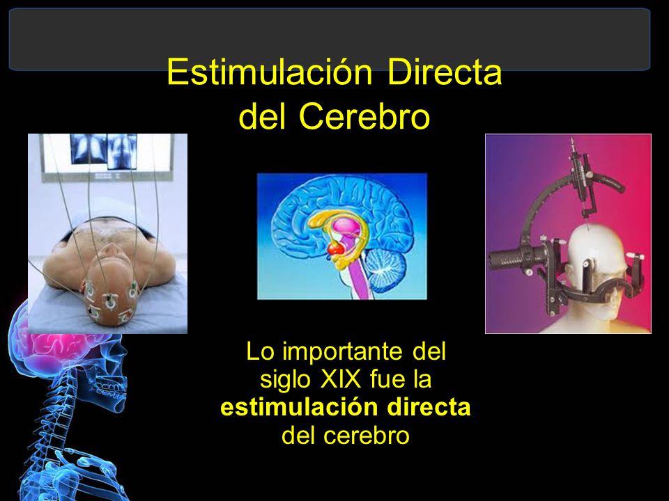 Estimulación Directa del Cerebro