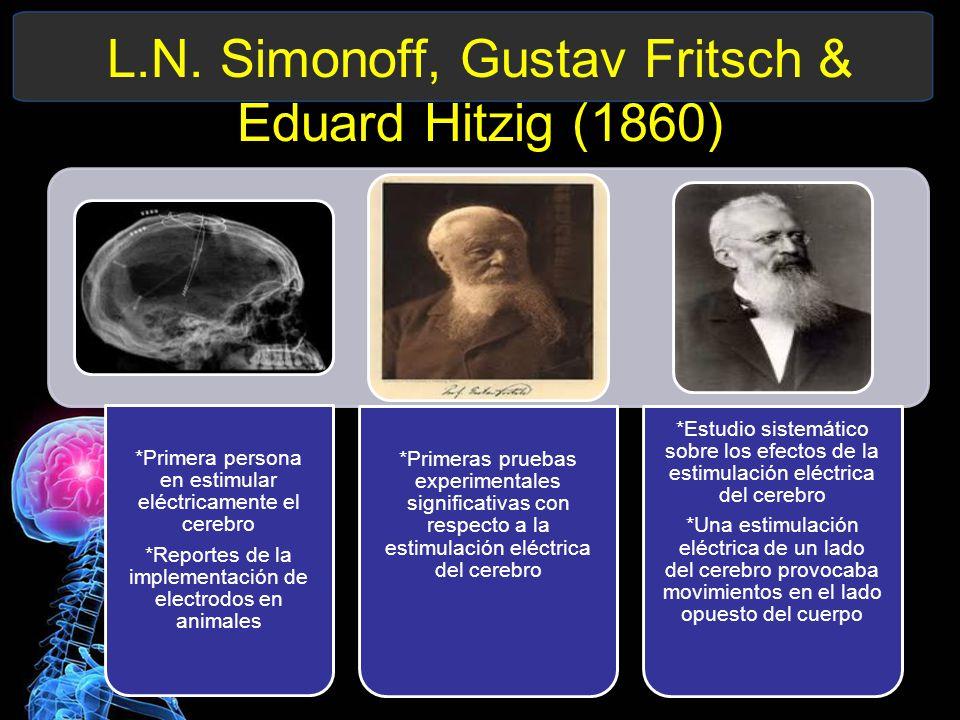 L.N. Simonoff, Gustav Fritsch & Eduard Hitzig (1860)