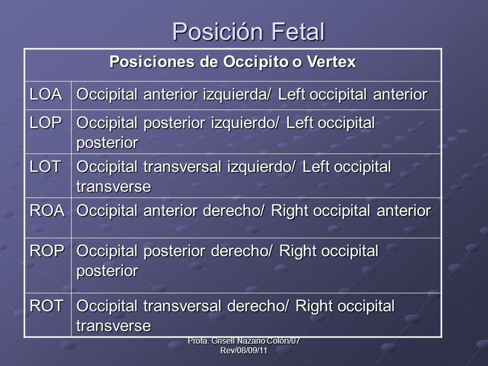 Posiciones de Occipito o Vertex