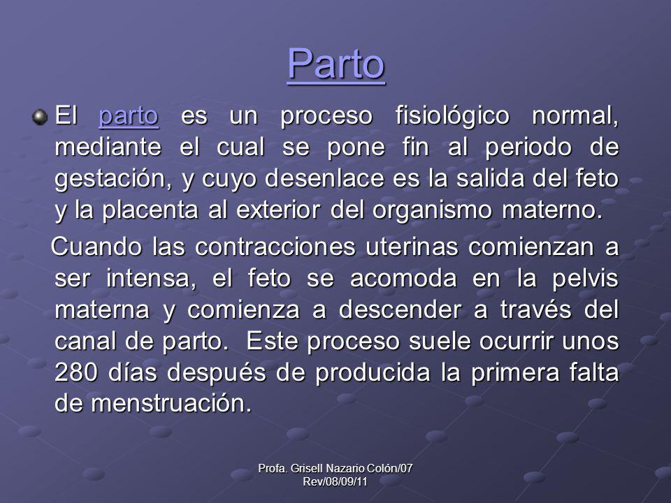 Profa. Grisell Nazario Colón/07 Rev/08/09/11
