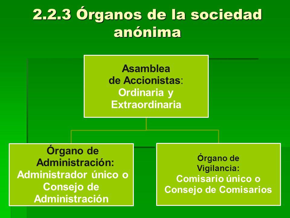 2.2.3 Órganos de la sociedad anónima