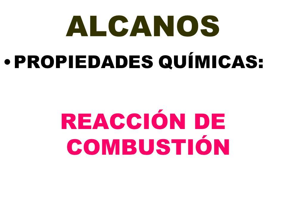 REACCIÓN DE COMBUSTIÓN