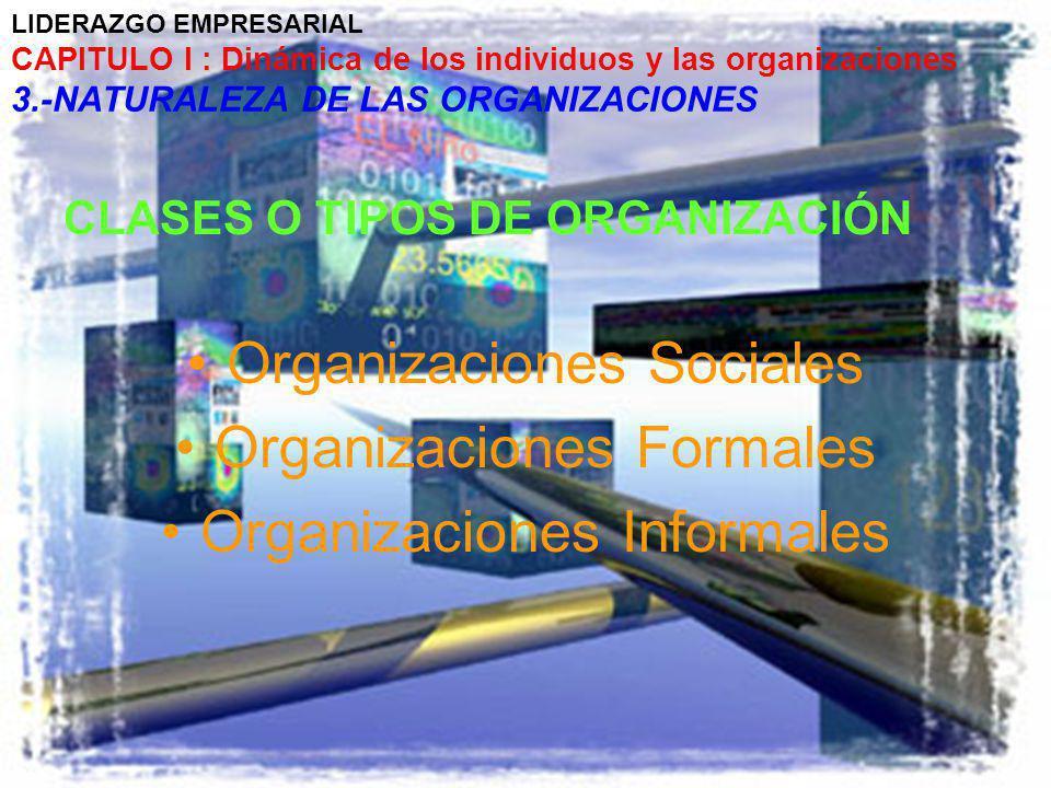 Organizaciones Sociales Organizaciones Formales