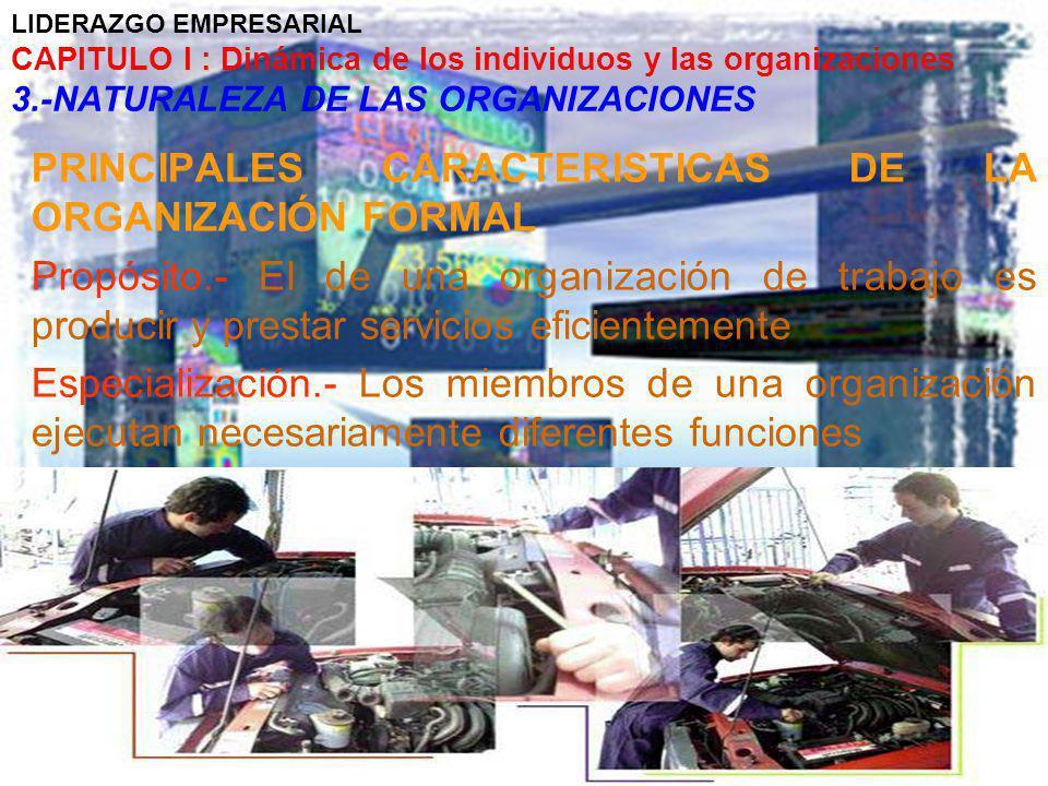 PRINCIPALES CARACTERISTICAS DE LA ORGANIZACIÓN FORMAL