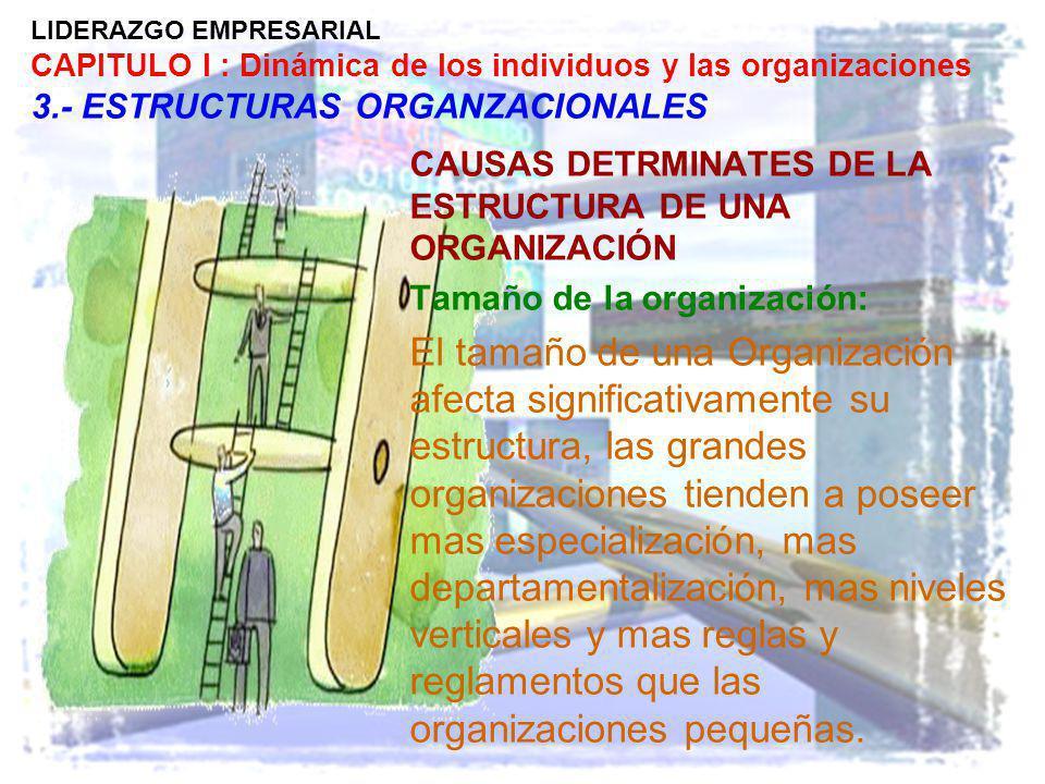 LIDERAZGO EMPRESARIAL CAPITULO I : Dinámica de los individuos y las organizaciones 3.- ESTRUCTURAS ORGANZACIONALES