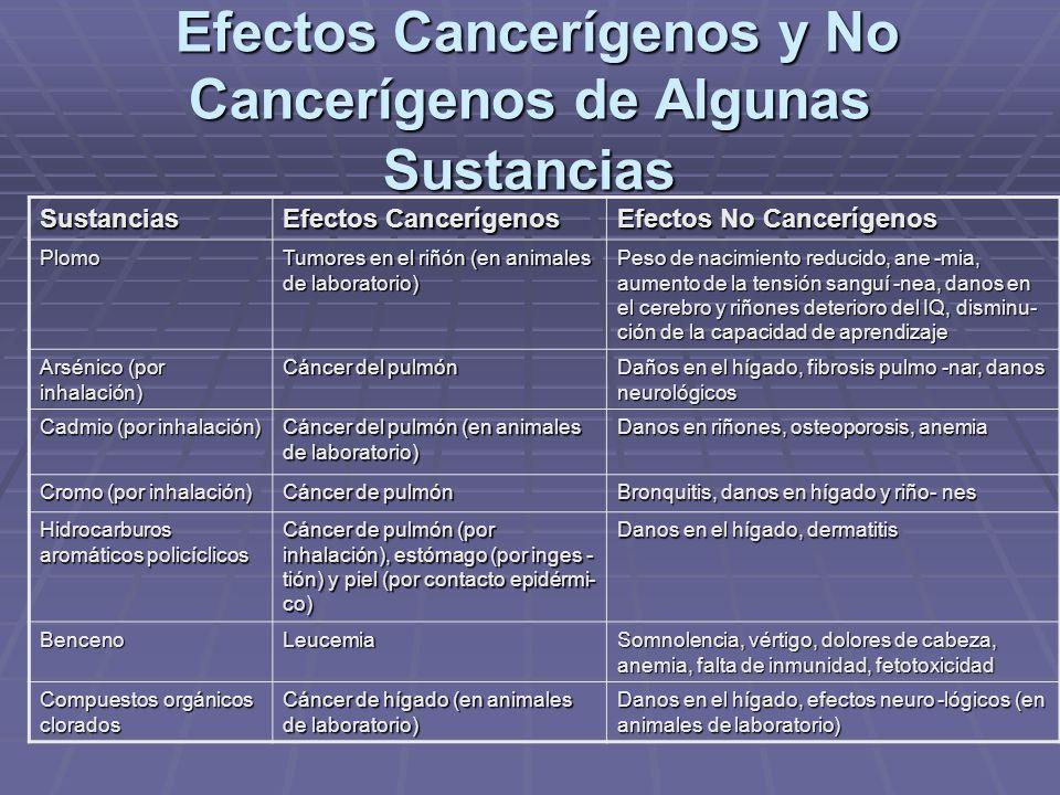 Efectos Cancerígenos y No Cancerígenos de Algunas Sustancias