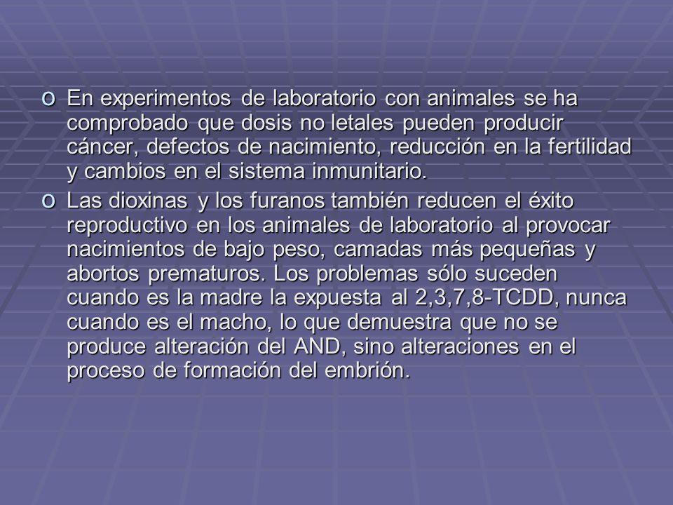 En experimentos de laboratorio con animales se ha comprobado que dosis no letales pueden producir cáncer, defectos de nacimiento, reducción en la fertilidad y cambios en el sistema inmunitario.