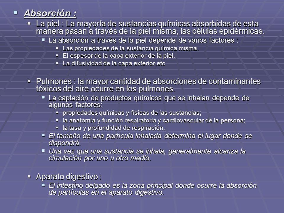 Absorción : La piel : La mayoría de sustancias químicas absorbidas de esta manera pasan a través de la piel misma, las células epidérmicas.