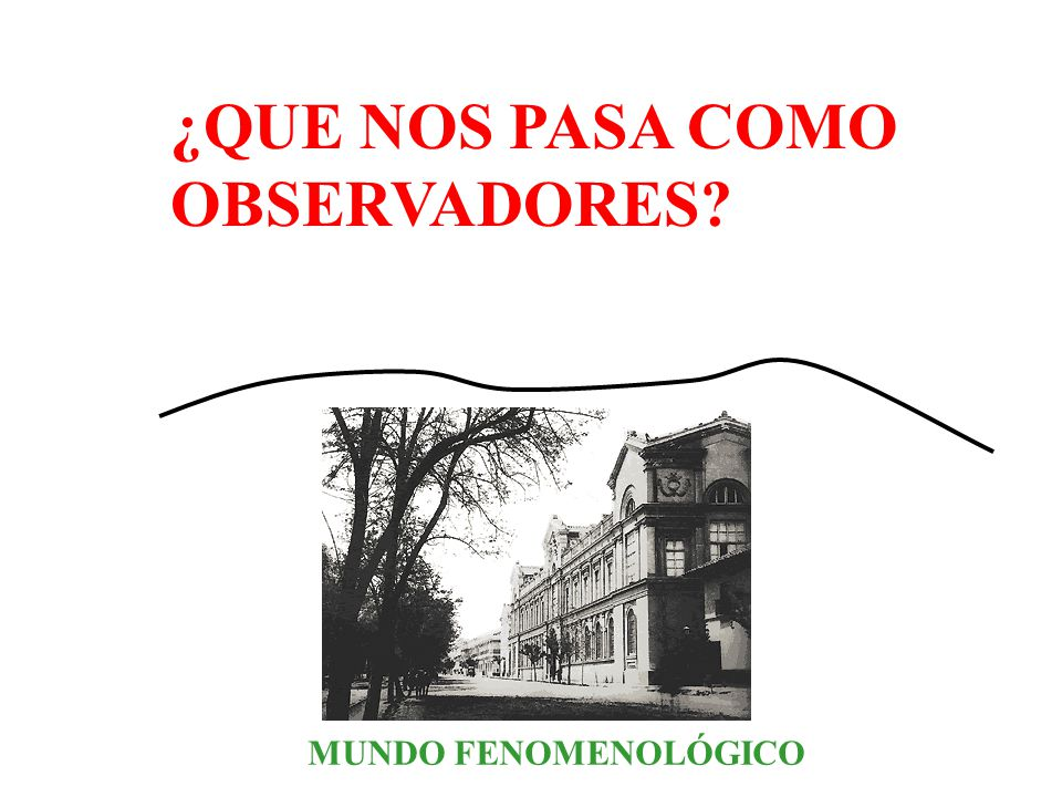 ¿QUE NOS PASA COMO OBSERVADORES MUNDO FENOMENOLÓGICO