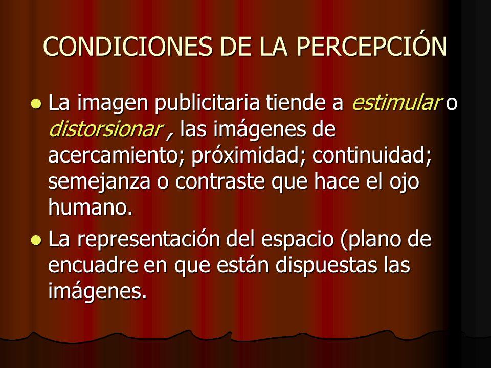 CONDICIONES DE LA PERCEPCIÓN