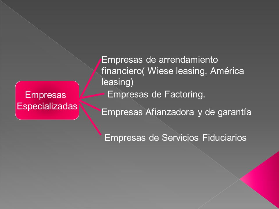 Empresas de arrendamiento financiero( Wiese leasing, América leasing)