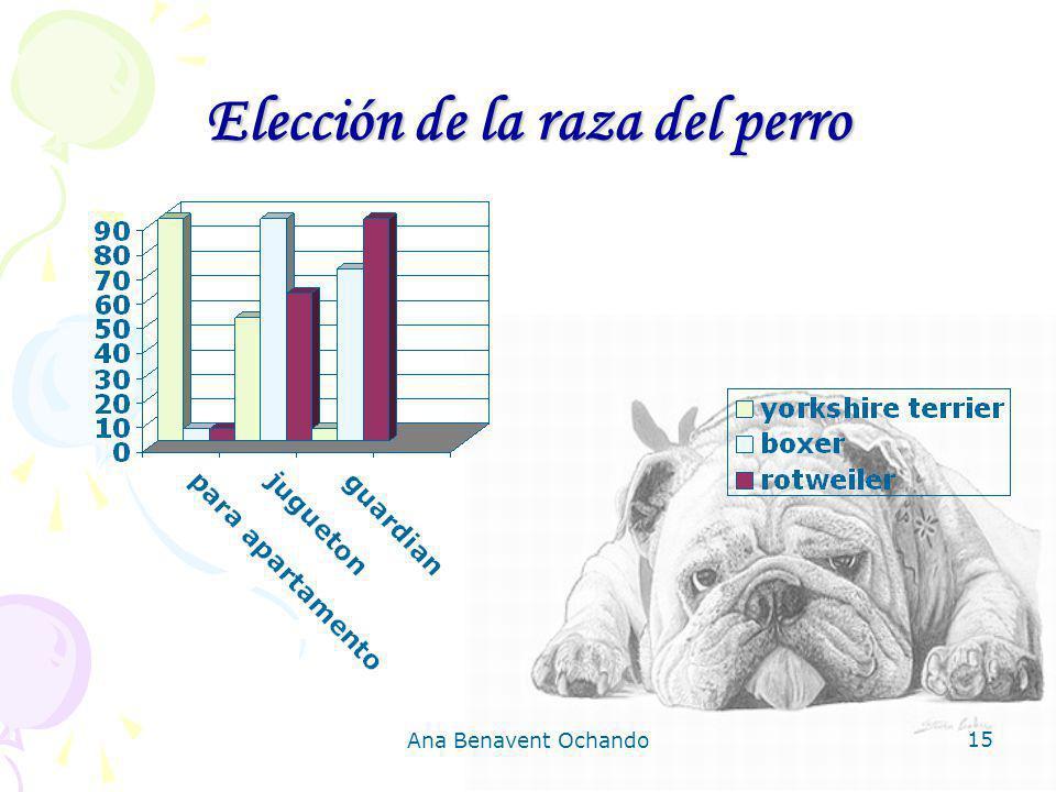 Elección de la raza del perro