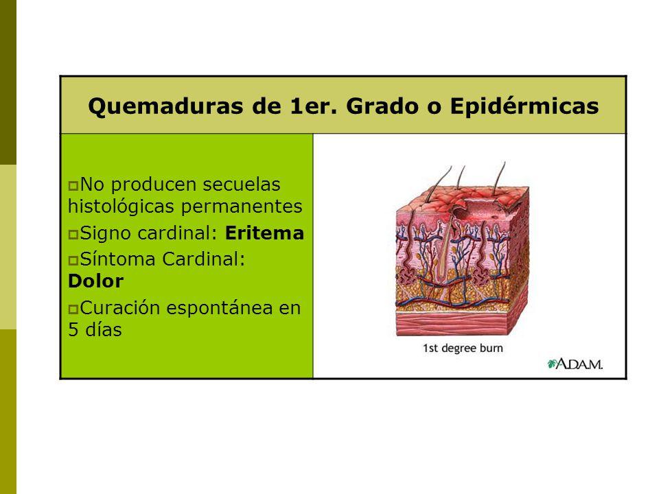 Quemaduras de 1er. Grado o Epidérmicas