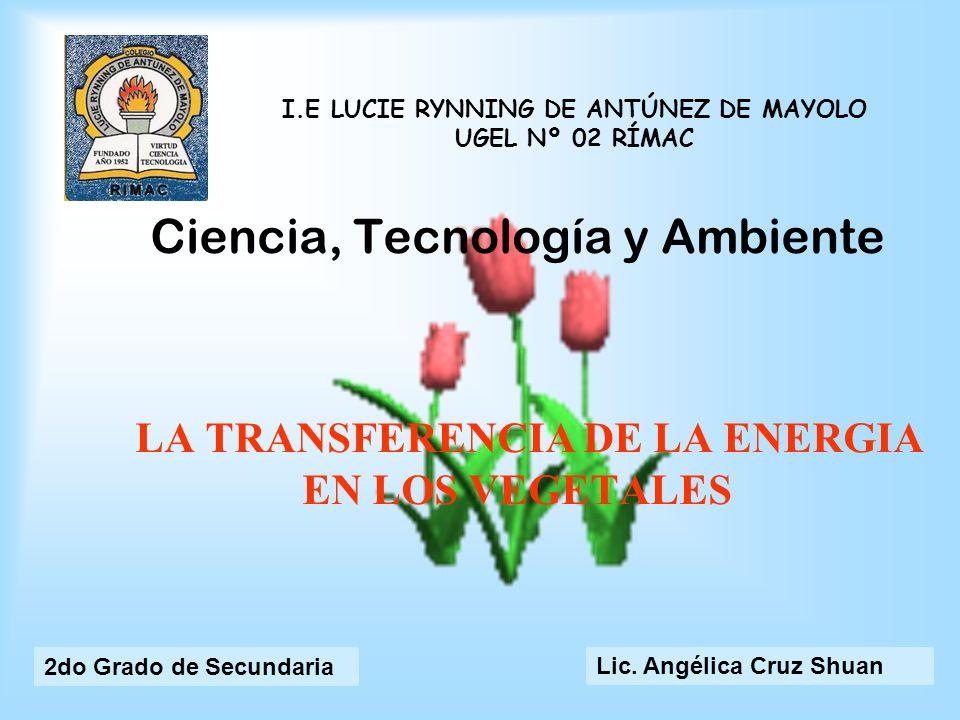 Ciencia, Tecnología y Ambiente