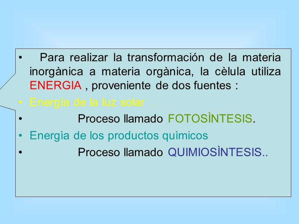 Para realizar la transformación de la materia inorgànica a materia orgànica, la cèlula utiliza ENERGIA , proveniente de dos fuentes :