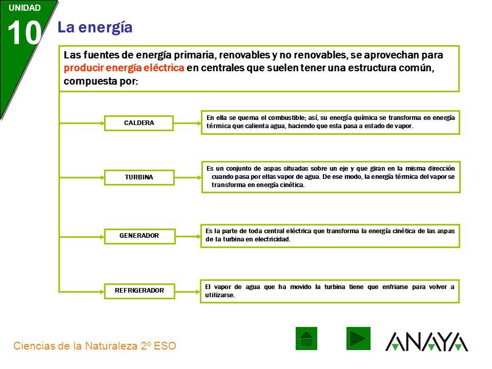 Las fuentes de energía primaria, renovables y no renovables, se aprovechan para producir energía eléctrica en centrales que suelen tener una estructura común, compuesta por: