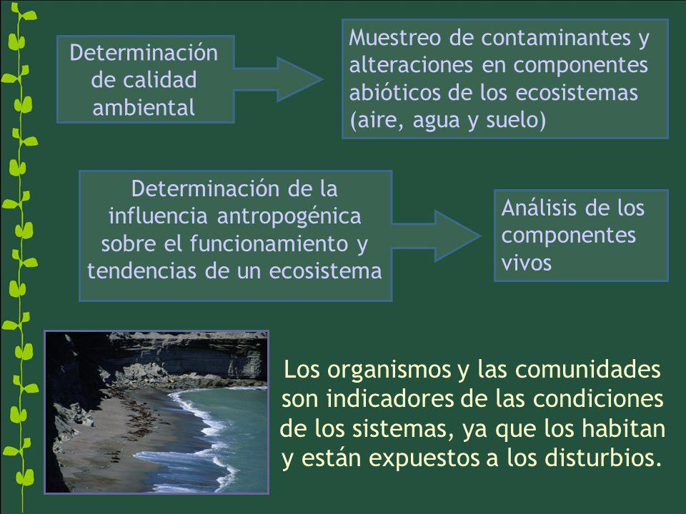 Determinación de calidad ambiental