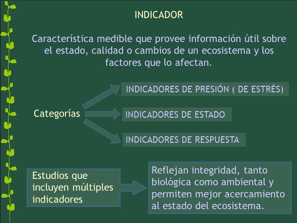INDICADORES DE PRESIÓN ( DE ESTRÉS)