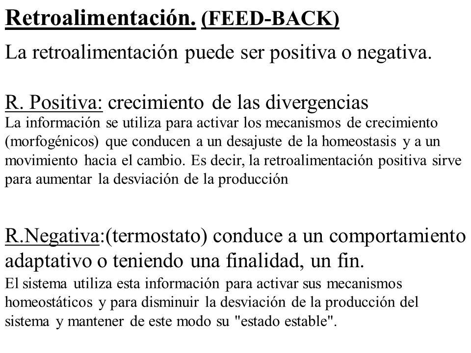 Retroalimentación. (FEED-BACK)