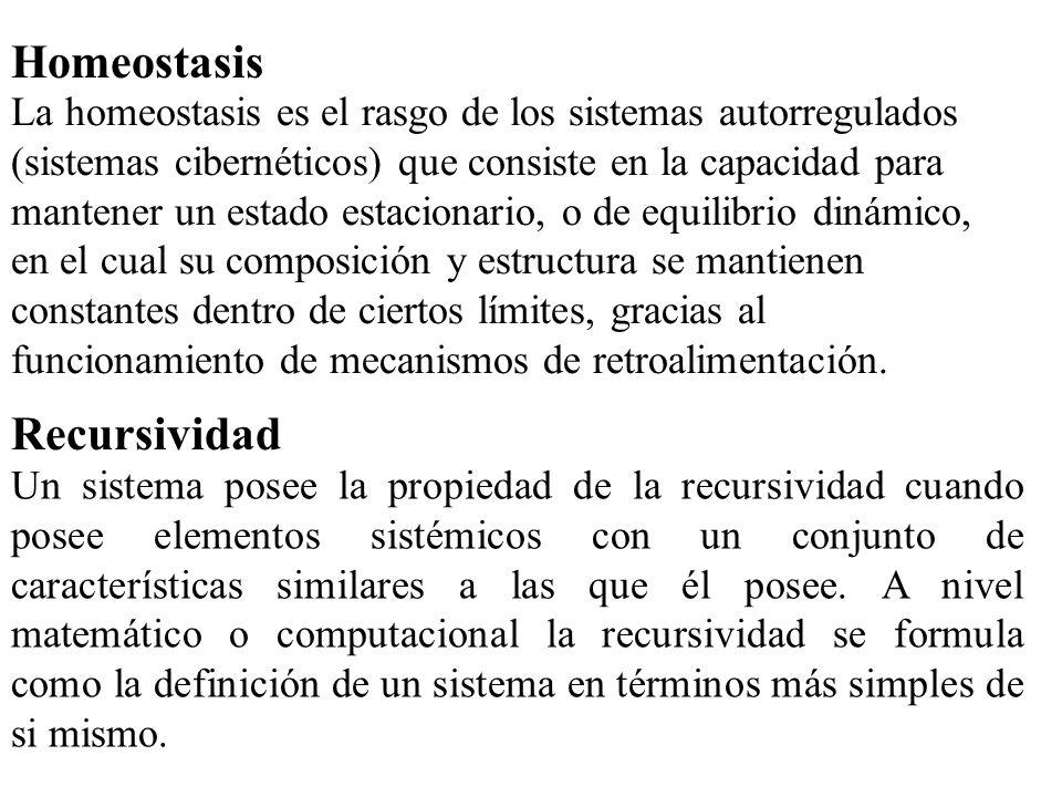 Homeostasis Recursividad