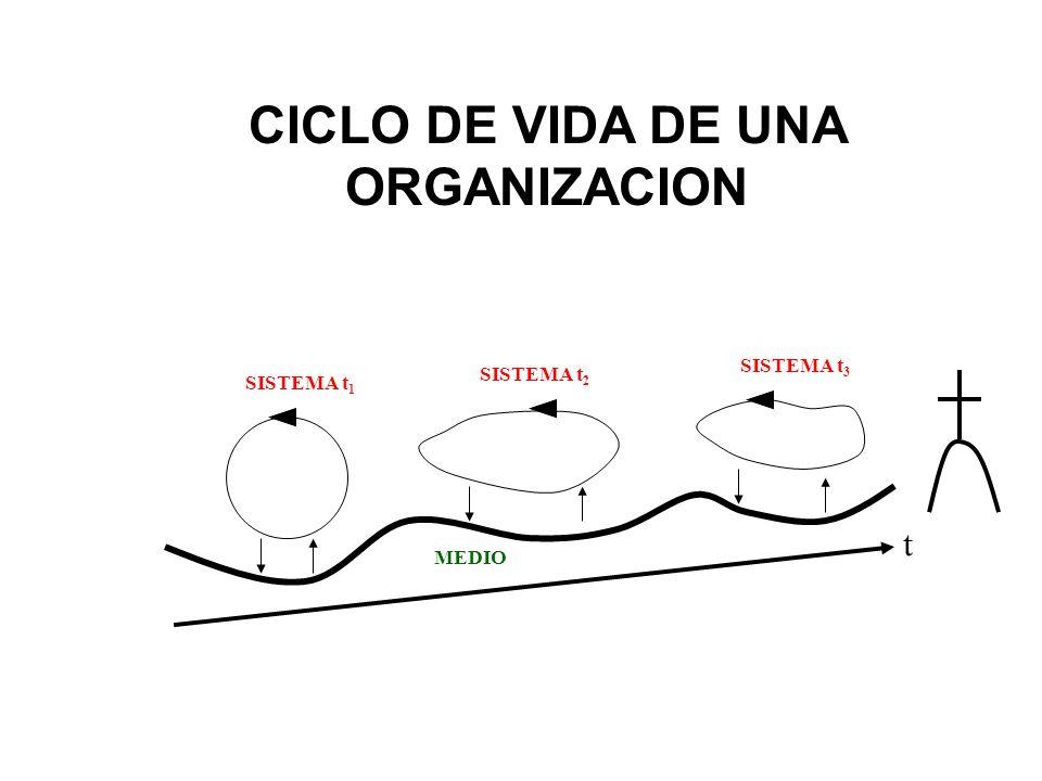 CICLO DE VIDA DE UNA ORGANIZACION