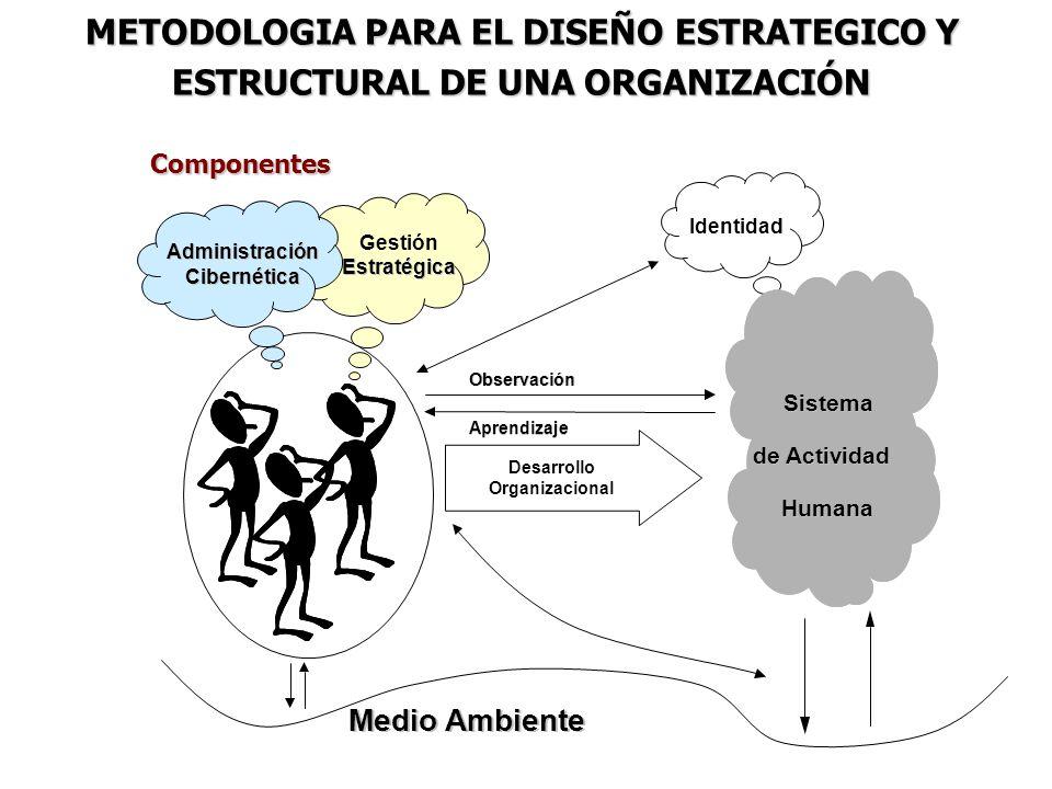 METODOLOGIA PARA EL DISEÑO ESTRATEGICO Y ESTRUCTURAL DE UNA ORGANIZACIÓN