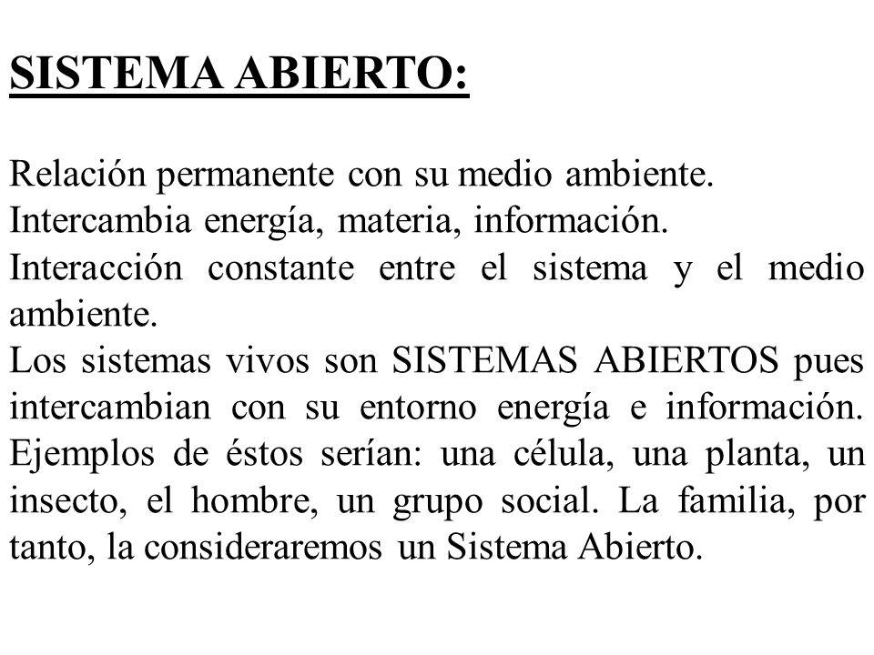 SISTEMA ABIERTO: Relación permanente con su medio ambiente.
