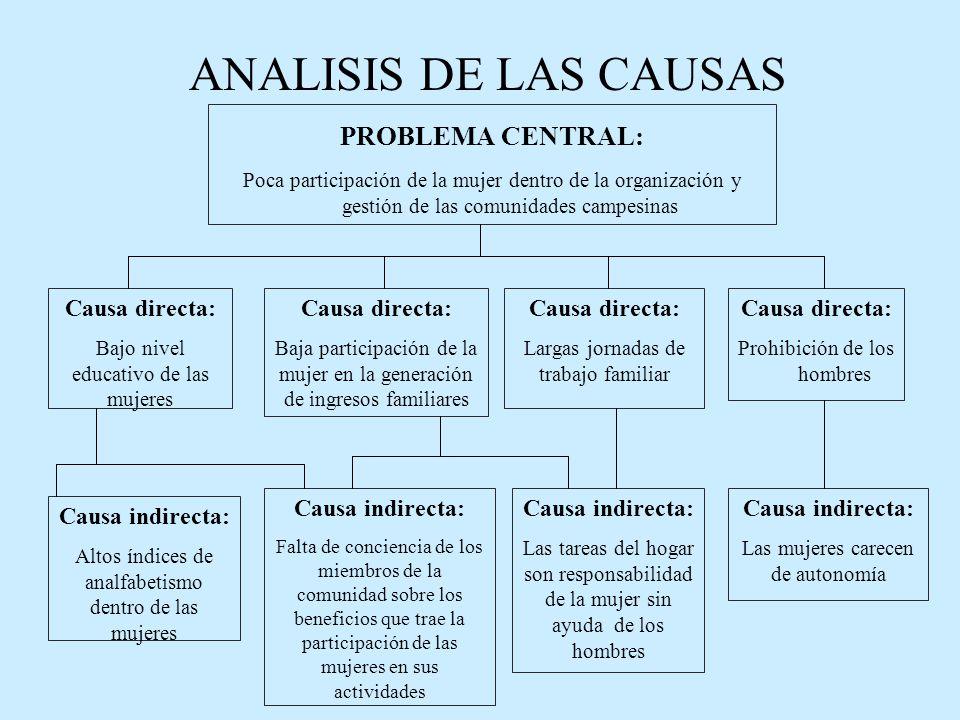 ANALISIS DE LAS CAUSAS PROBLEMA CENTRAL: Causa directa: Causa directa: