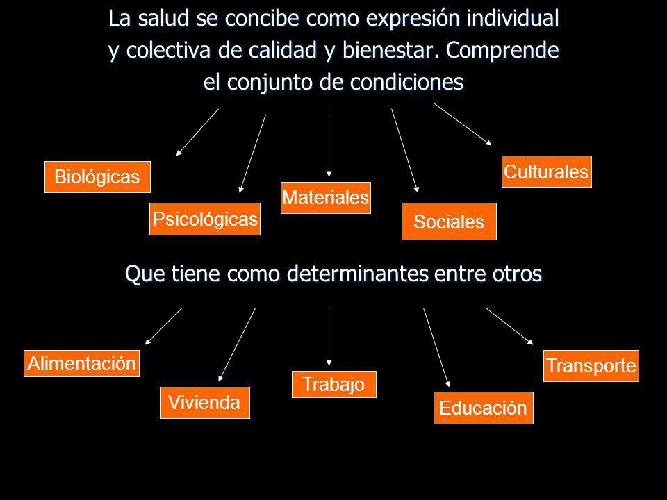 La salud se concibe como expresión individual