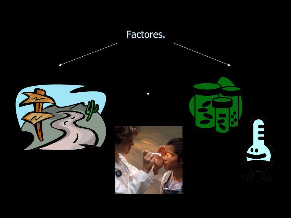 Factores.