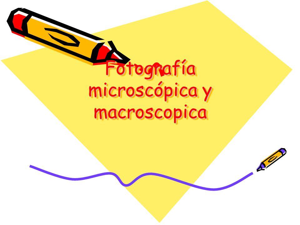 Fotografía microscópica y macroscopica