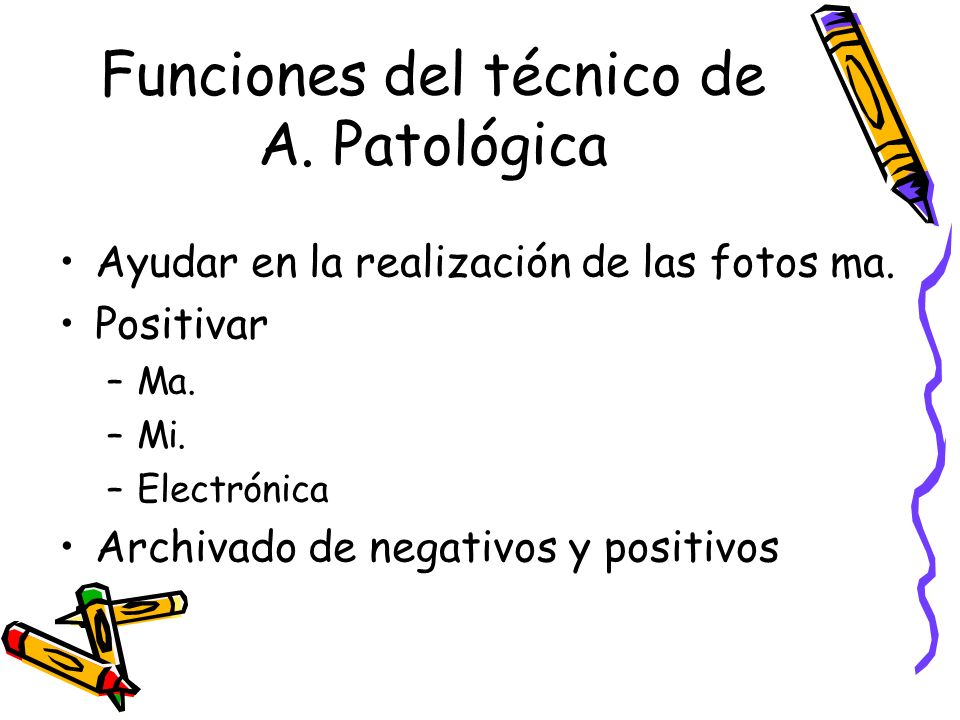 Funciones del técnico de A. Patológica