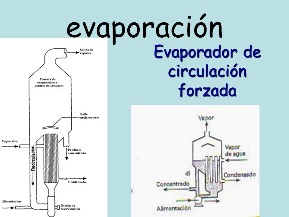 Evaporador de circulación forzada