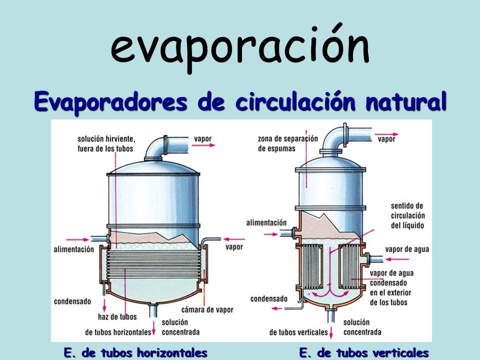 Evaporadores de circulación natural