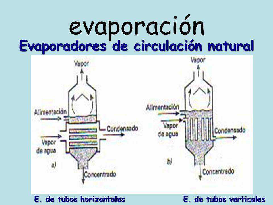 evaporación Evaporadores de circulación natural