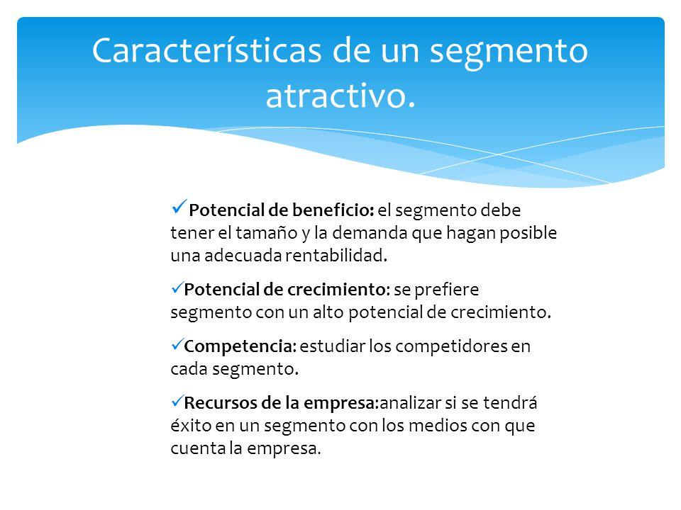 Características de un segmento atractivo.