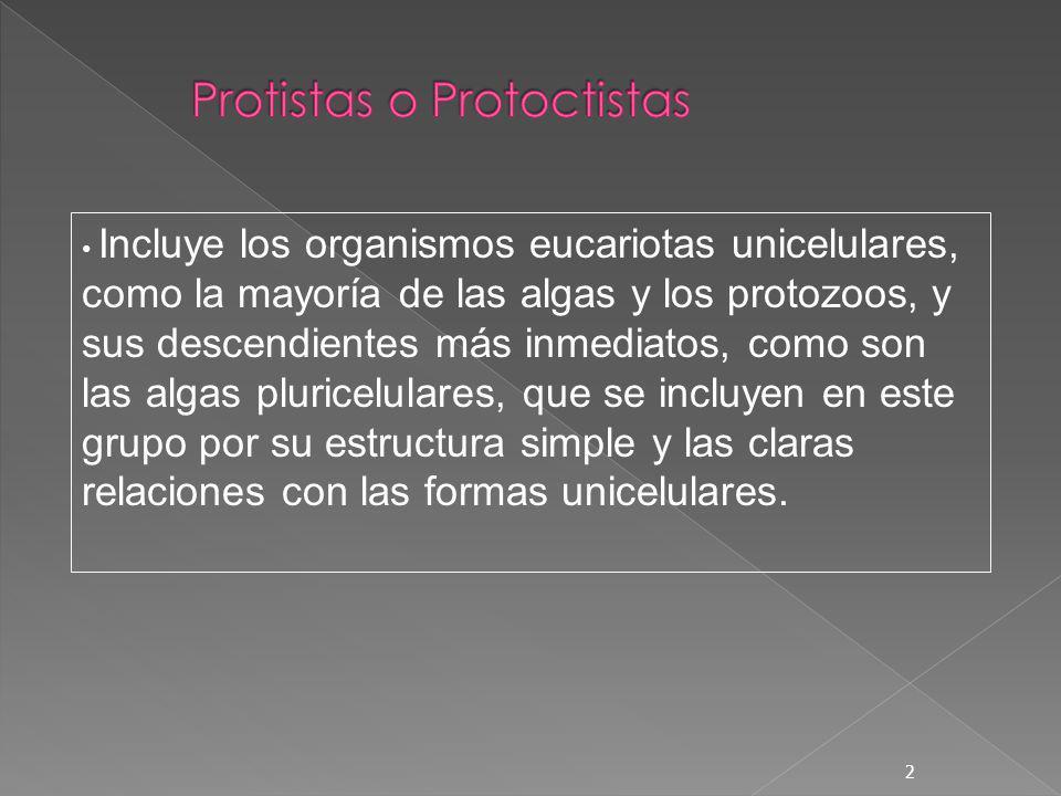 Protistas o Protoctistas