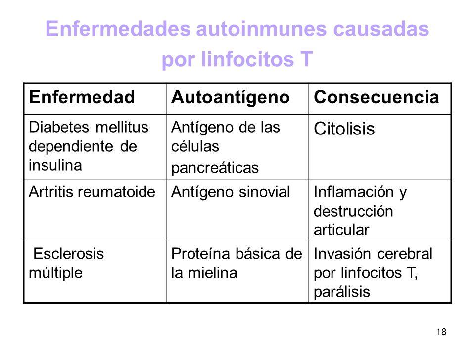 Enfermedades autoinmunes causadas por linfocitos T