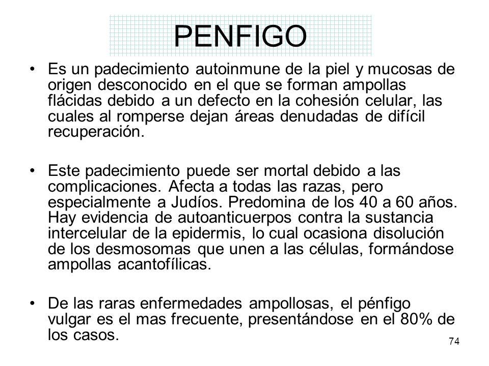 PENFIGO