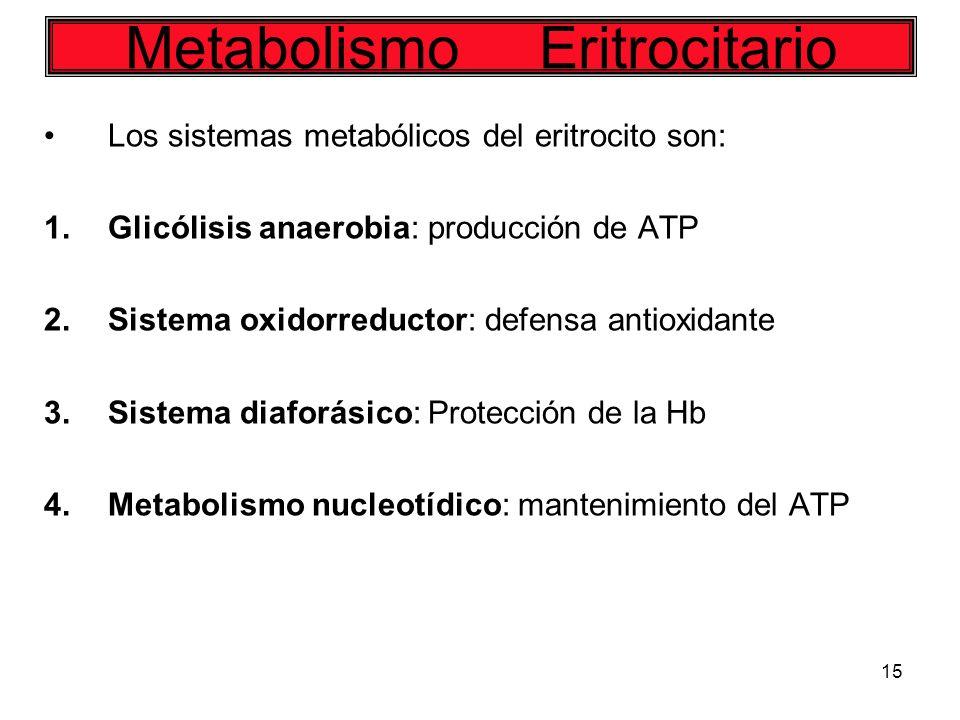 Metabolismo Eritrocitario